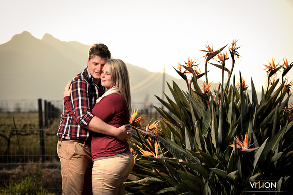 wine farm photo shoot